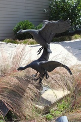 Canada Geese Sculpture